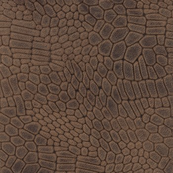 Mosaic M6